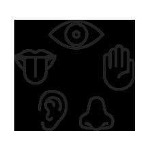 text-i 5 sensi della marca